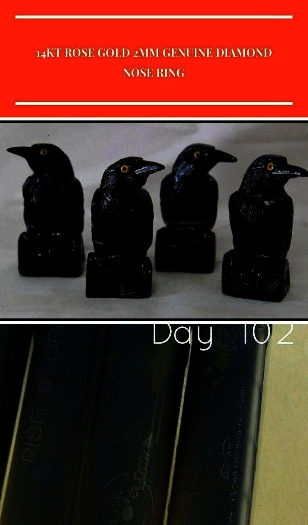 Totem Animal Gifts for Friends Home Office Decor Medium Black Onyx Raven Spirit Totem Animal Gifts for Friends Home Office Decor Medium Black Onyx Raven Spirit Totem Anim...