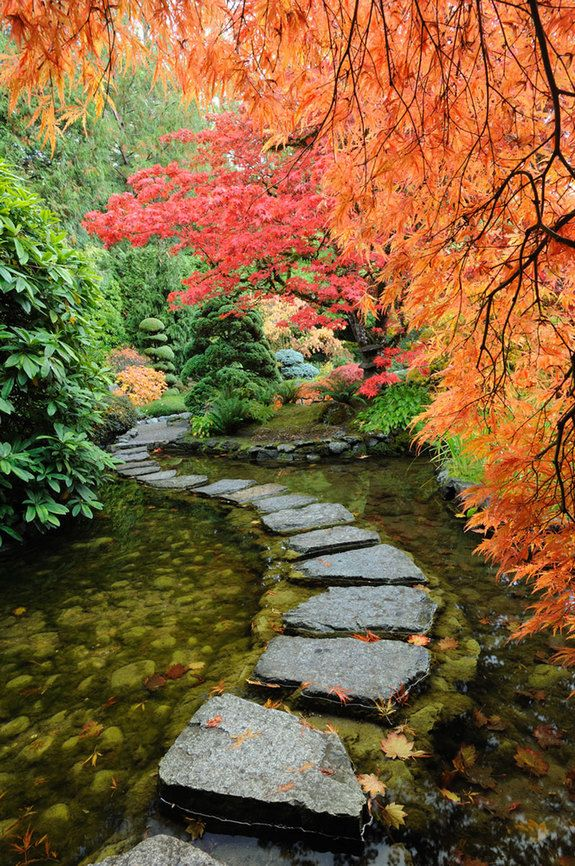 Built in 1903, the world-famous Butchart Gardens, located in Brentwood Bay in British Columbia, Canada, boasts lavish floral display gardens and a wide array of trees. Shown above is the treasured estate's Japanese garden.