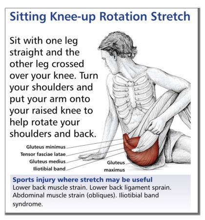 Sample Stretch from The Anatomical Stretching Charts