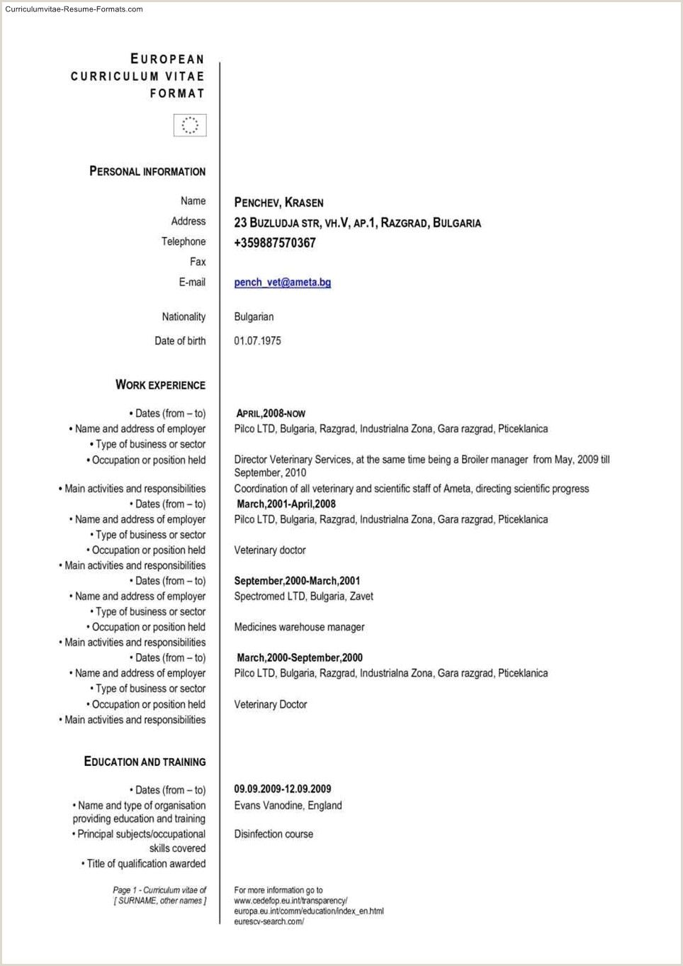 Europass Cv format Pdf in 2020 Curriculum vitae format