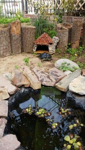 Mini casa para tortuga casa - Estanques para tortugas de agua ...