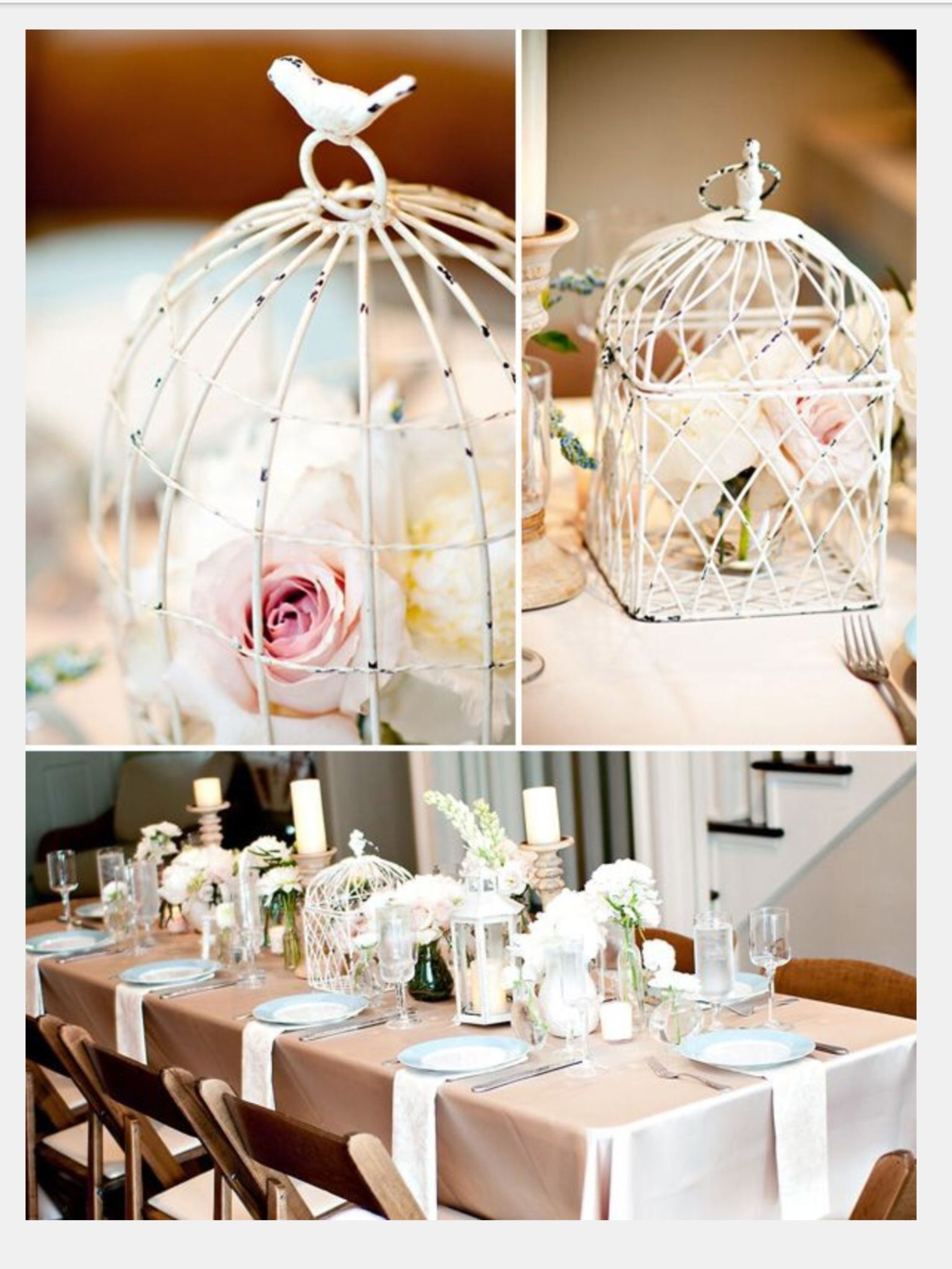 Birdcage | Party ideas! | Pinterest | Babyshower