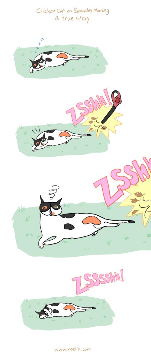 The Adventures of Chicken Cat