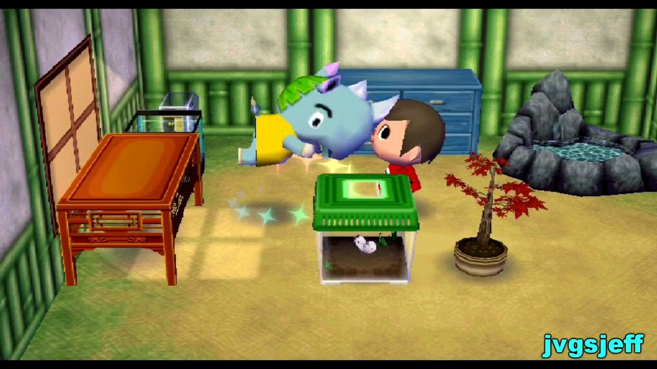 Accf The 9th Year In Pictures City Folk Animal Crossing Pictures