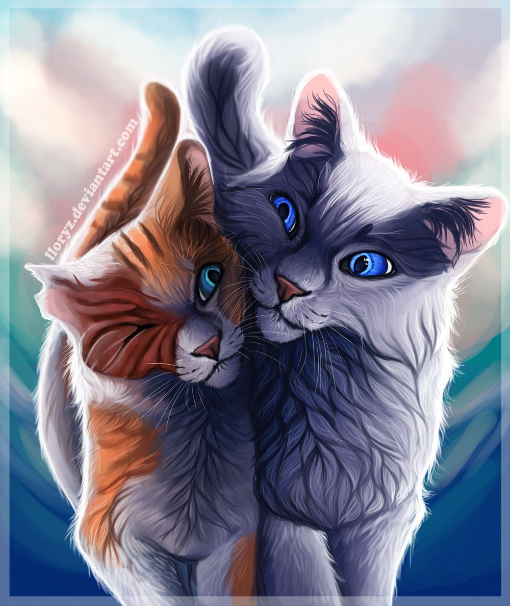 Brightheart And Cloudtail By Lloryz Deviantart Com On