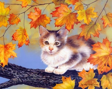 KITTENS ON FALL TREE - colorful, kittens, paintings, cats, naughty, cute,  sweet, paintings animals, animals, love, autumn, kitty, adorable, col… |  Cat art, Art, Painting