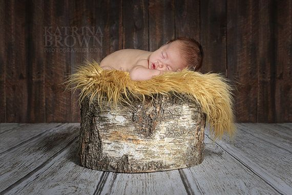 Newborn Infant Baby Photography Prop Tree Stump- Digital files to add your images to