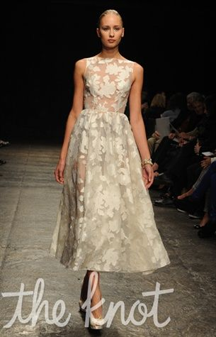Hayley Paige Fall 2013