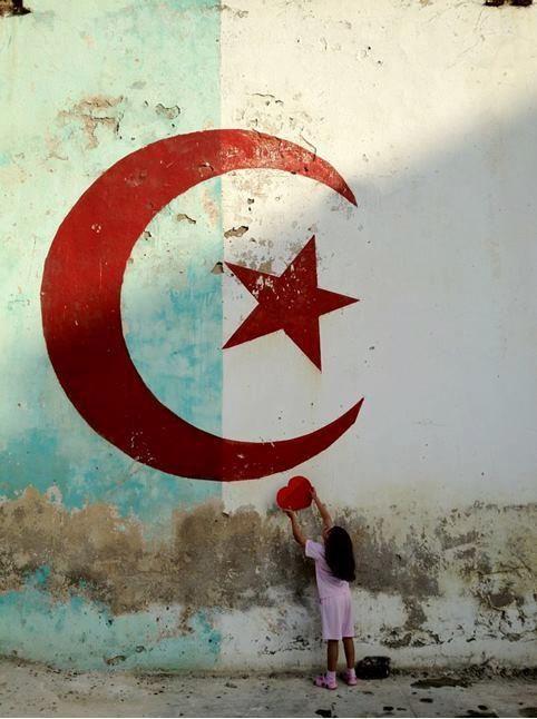 Pin By Remote Finds On My Heart Algerian Flag Algerian Algeria