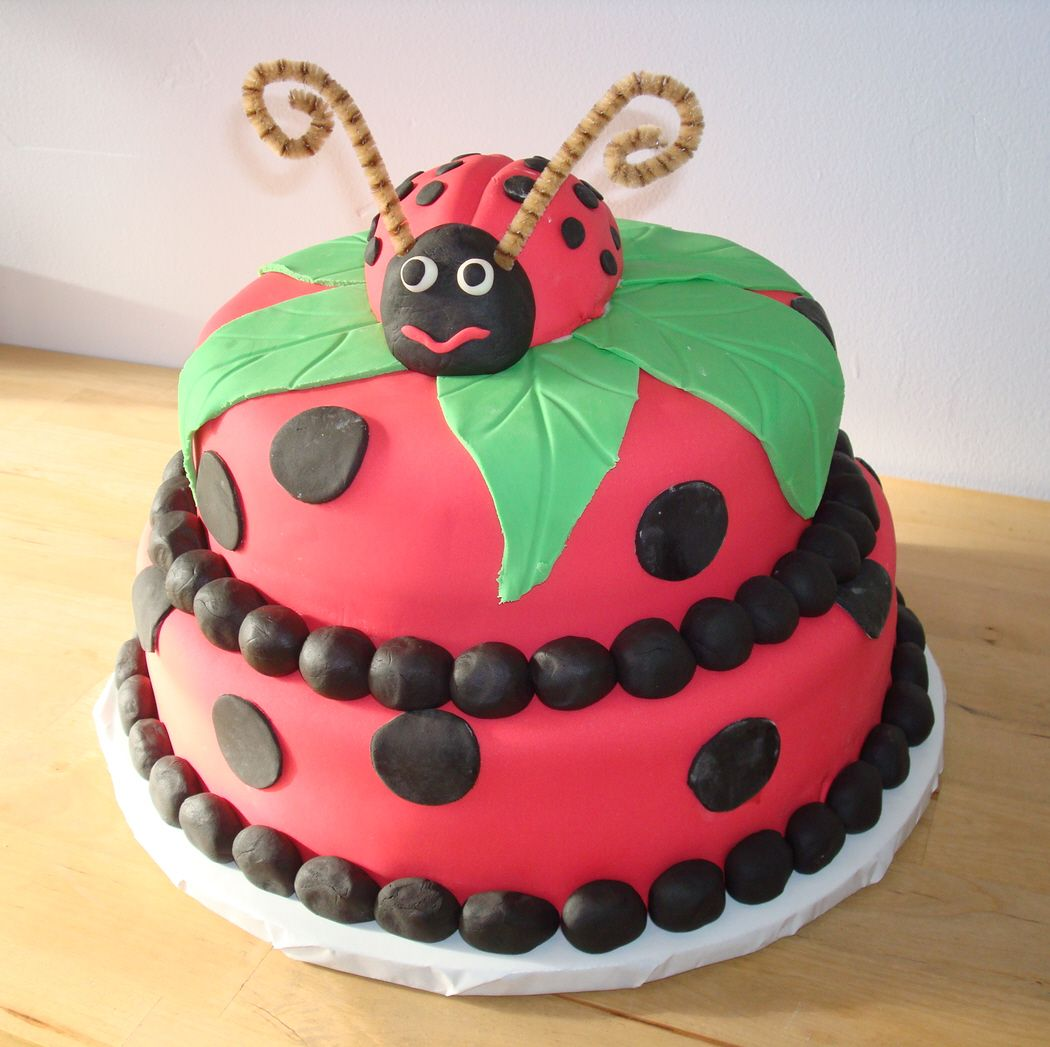 Ladybug Cake by Windy City Cakery