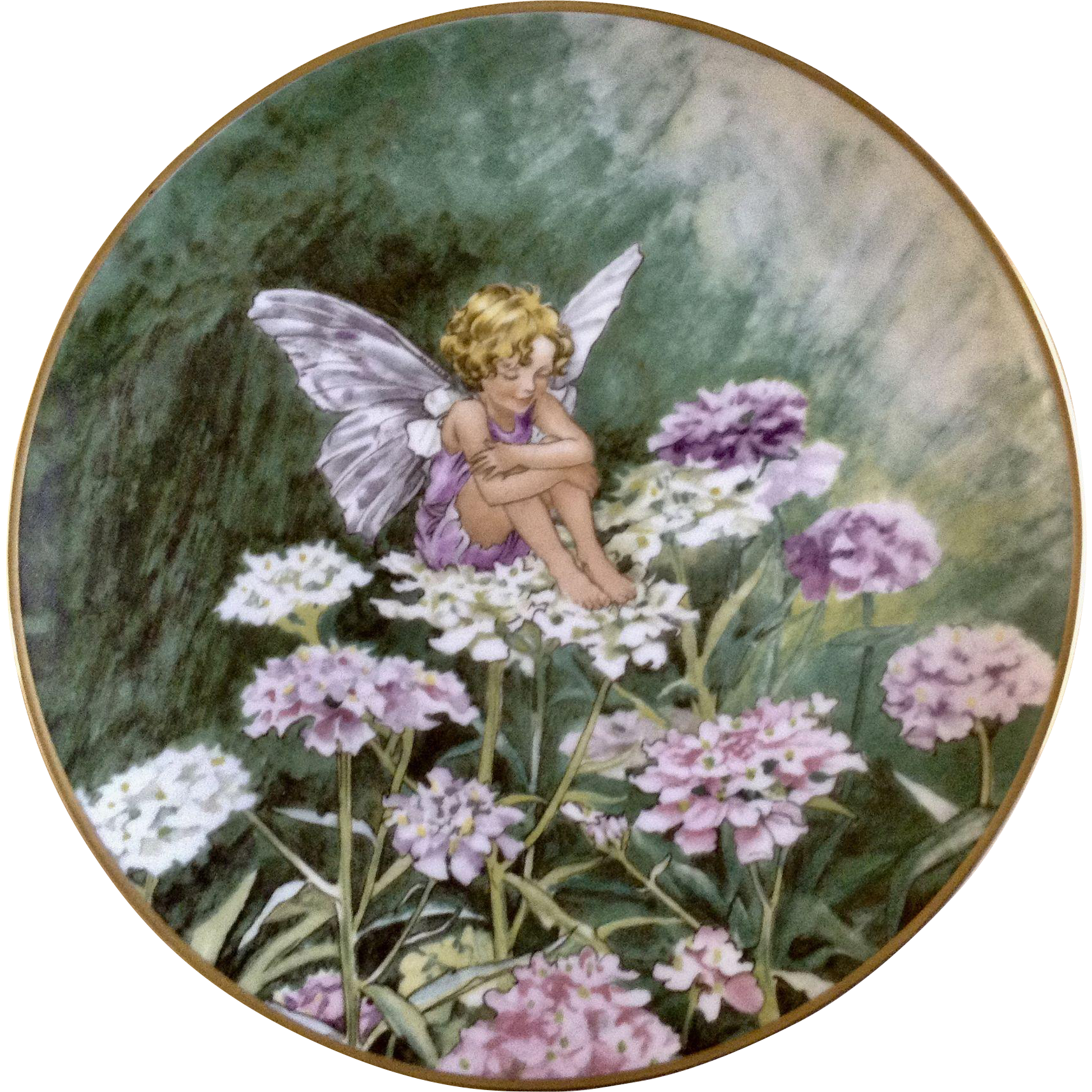 1980 The Candytuft Fairy Collectors Plate Flower Fairies By Heinrich H C Villeroy Boch Germany Discontinued Flower Fairies Flower Plates Flowers