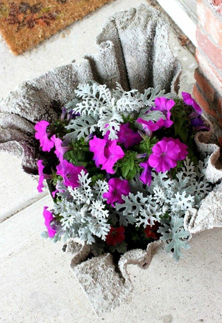 Gartendeko Beton gartendeko beton petunien pink greiskraut silber blaetter garten