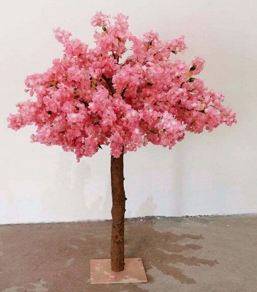 Small Size Pink Cherry Blossom Tree Pink Cherry Blossom Tree Cherry Blossom Tree Blossom Trees
