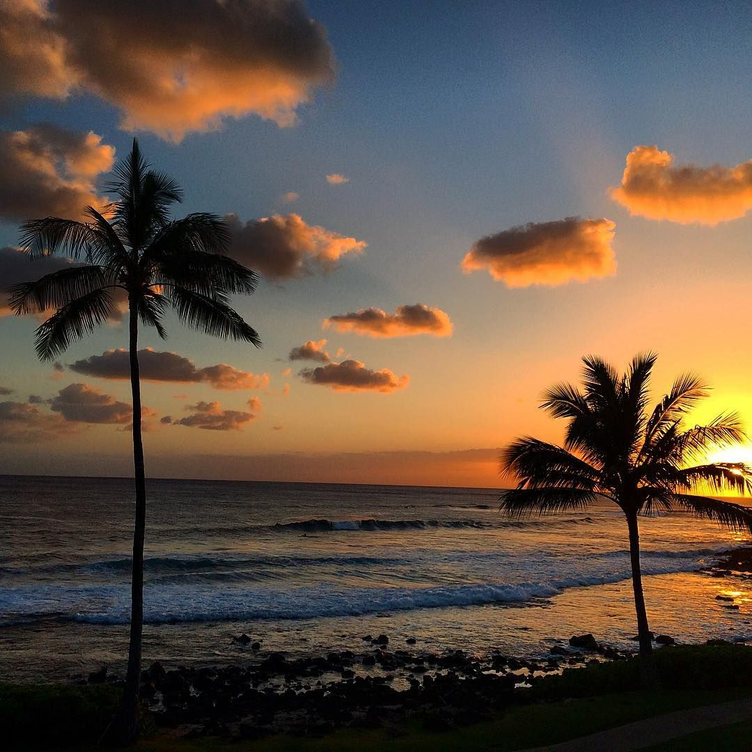 Sunset Poipubeach Puffyclouds Surf Palm Trees Poipu Beach Sunset Palm Trees Palm trees sunset horizon sky clouds