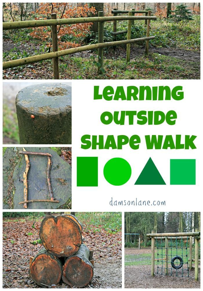 The Shape Of My Heart By Mark Sperring And Alys Paterson Shape Walk Forest School Activities Nature School Walking In Nature