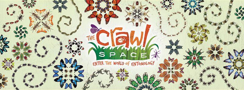 Crawl space science museum lafayette jefferson street