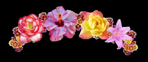 transparent flower crown Google Search Flower clipart