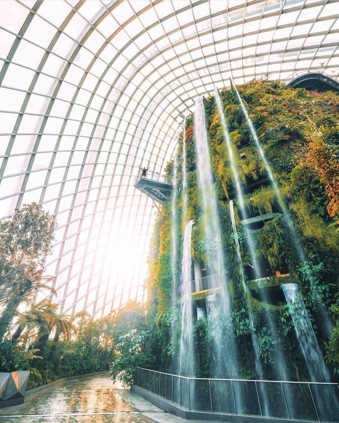 Garden By The Bay Singapore Picture By Timothysykes Go Follow This Self Made Millionaire Who Travels The World While Teaching