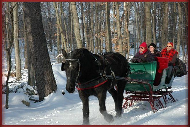 Christmas at the Library - The Billy Graham Library |Horse Drawn Sleigh Rides Christmas