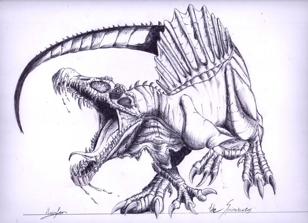Spinosaurus (Last pen drawing of dinosaurs... the amazing