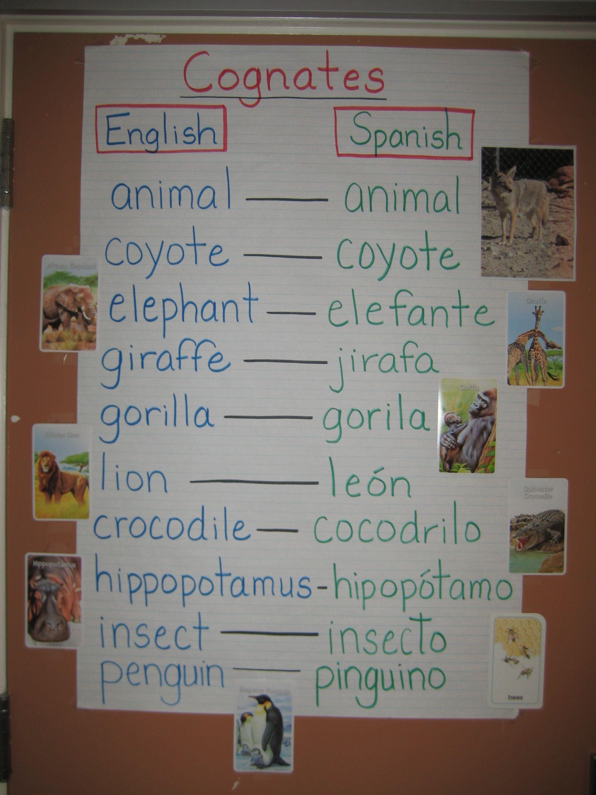 Cognates Help With Vocabulary Development Mary Wallis