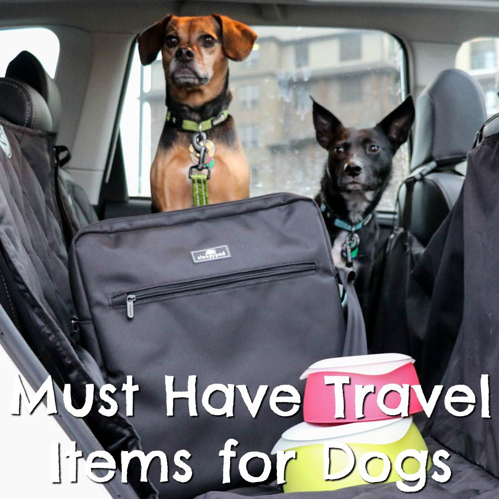 Beagles And Bargains Therapy Dogs Travel Items Dog Friends