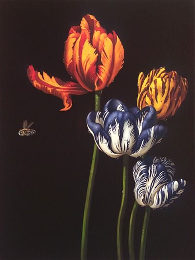 Marc Dennis  The Tulips and the Bee