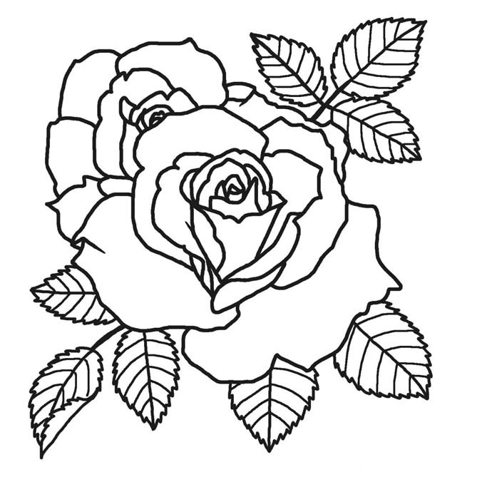 Riscos Flores Para Bordar Em Ponto Russo Coisas Para Desenhar