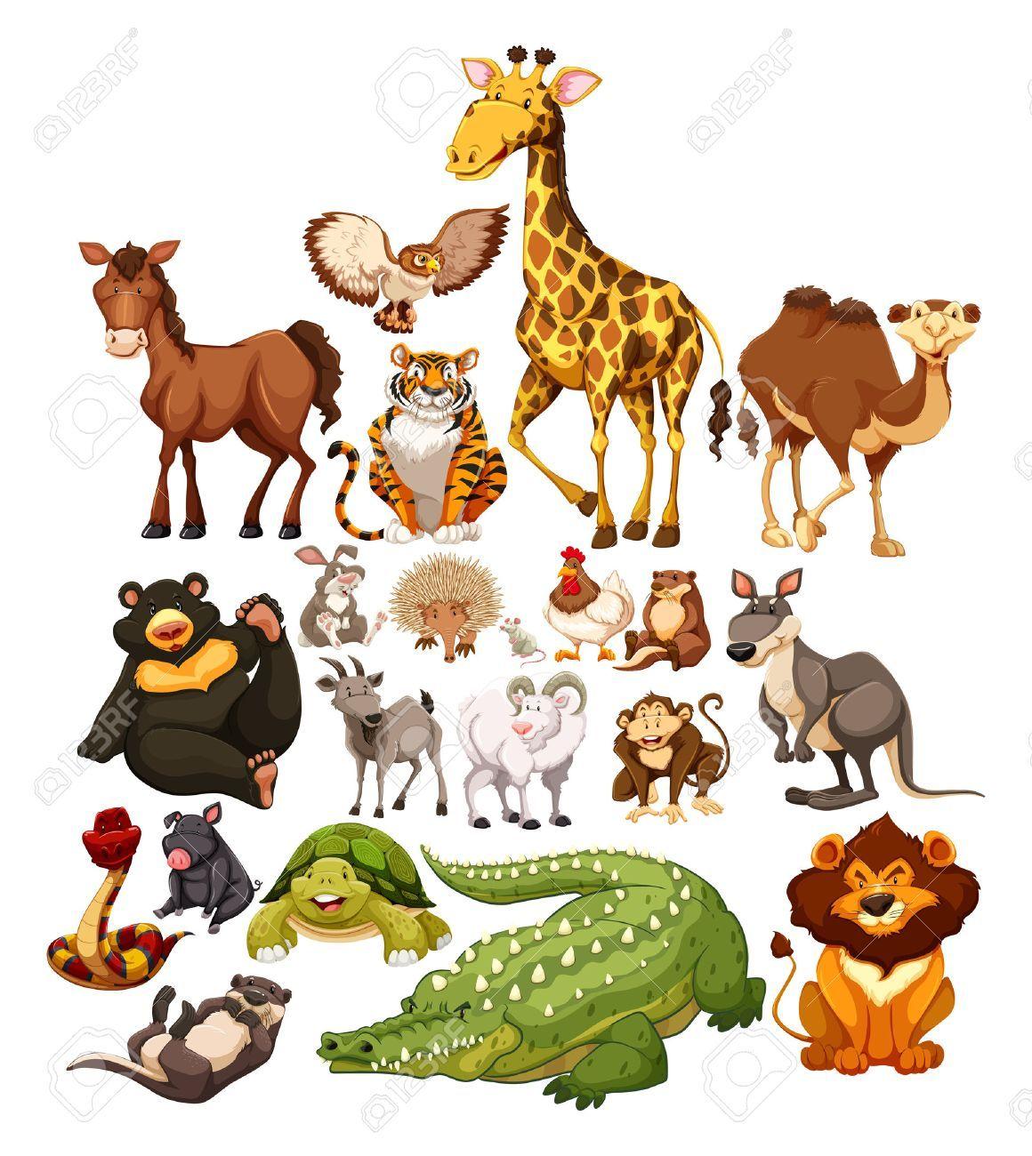Different Type Of Wild Animals Illustration Illustration Ad Wild Type Animals Illustration Il Wild Animals Vector Animal Illustration Animals Wild