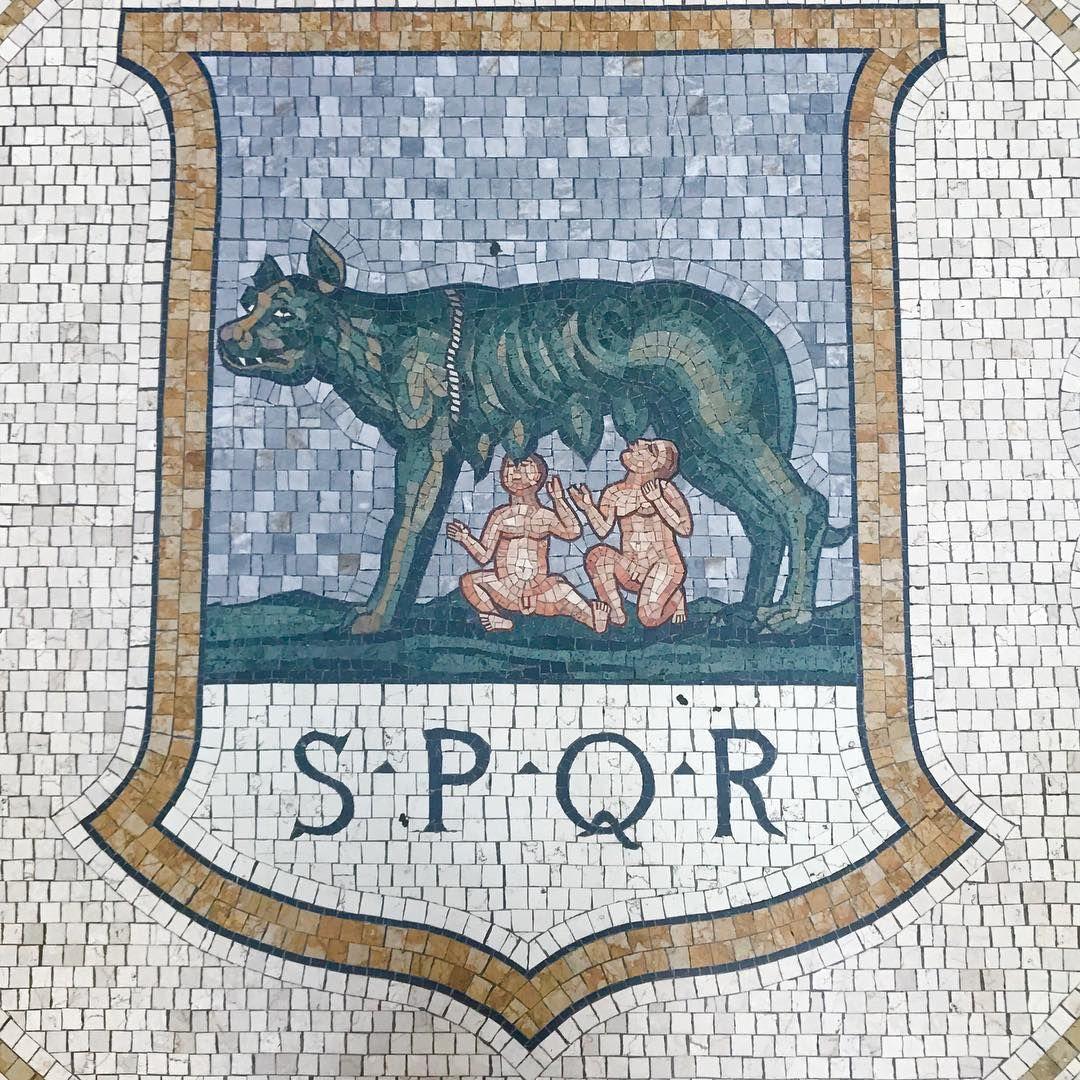alexahamptoninc | Romulus and remus, Romulus, Ancient rome