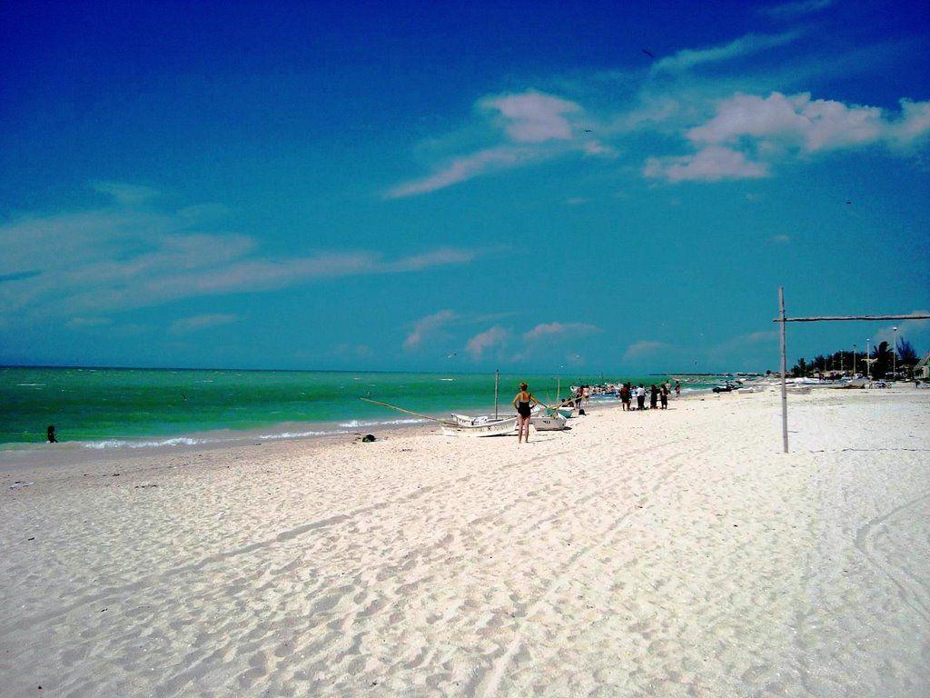 Fotos de la playa de celestun