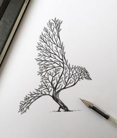 Resultado De Imagen De Imagenes De Arboles Para Dibujar A Lapiz