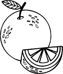 Resultado De Imagem Para Fruta Laranja Para Colorir Brindes Dia Das Maes Colorir Laranja