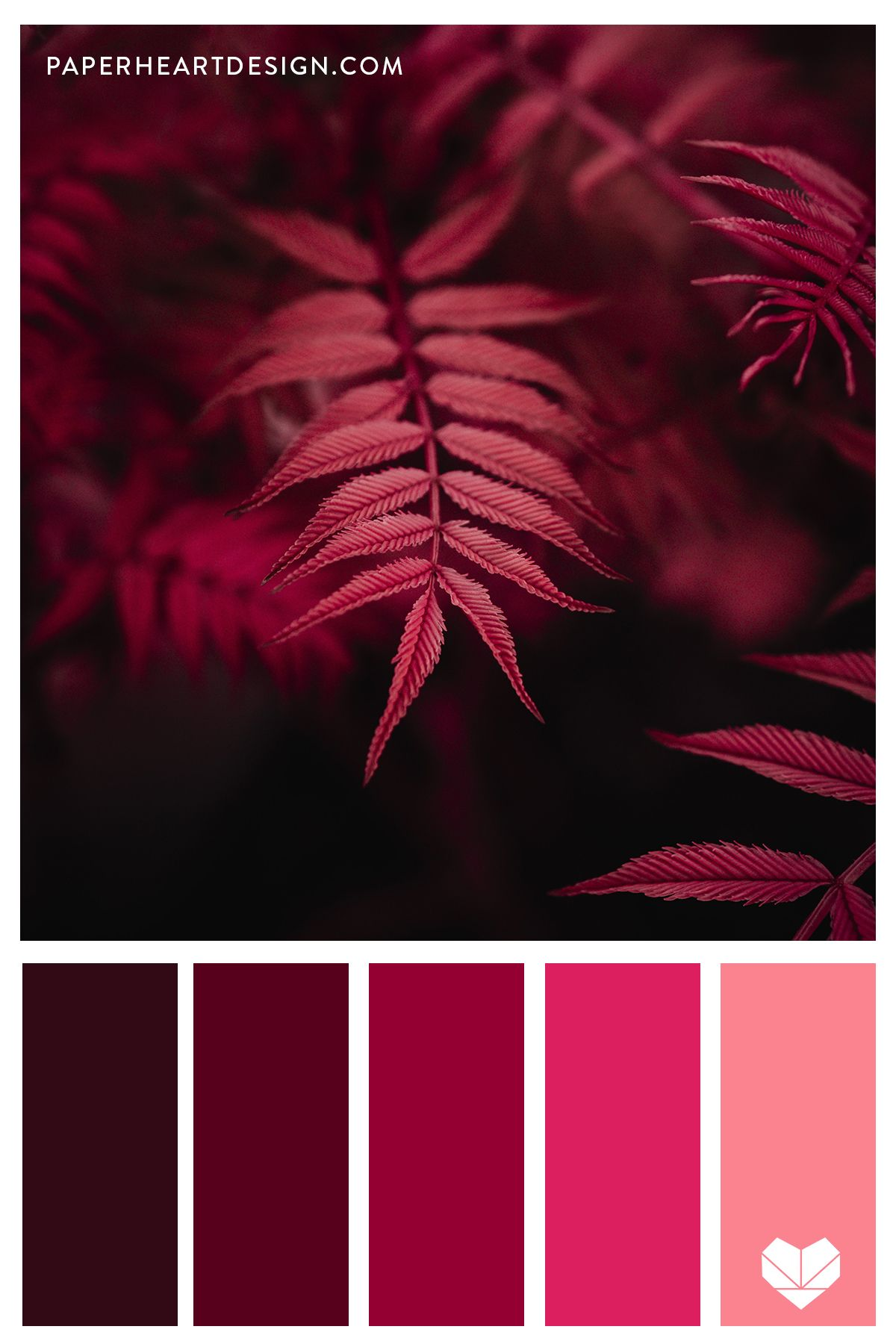 Red Fern Color Palette Forest Colors In 2020 Red Colour Palette Brand Color Palette Red Color Schemes,Meghan Markle And Prince Harry Santa Barbara Home