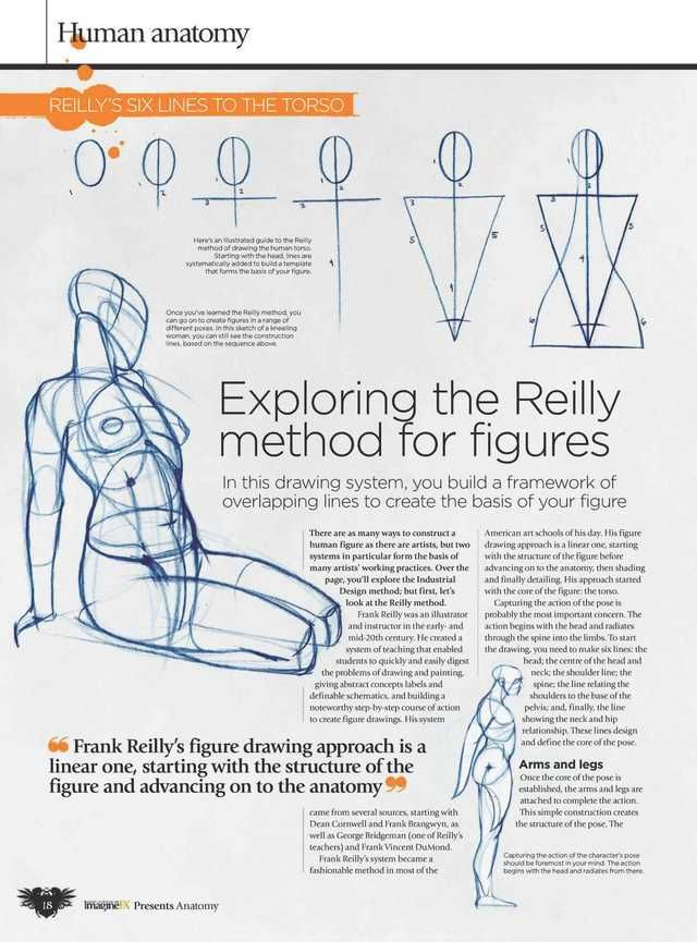 Book Scans | Anatomy, Anatomy practice, Figure drawing ...