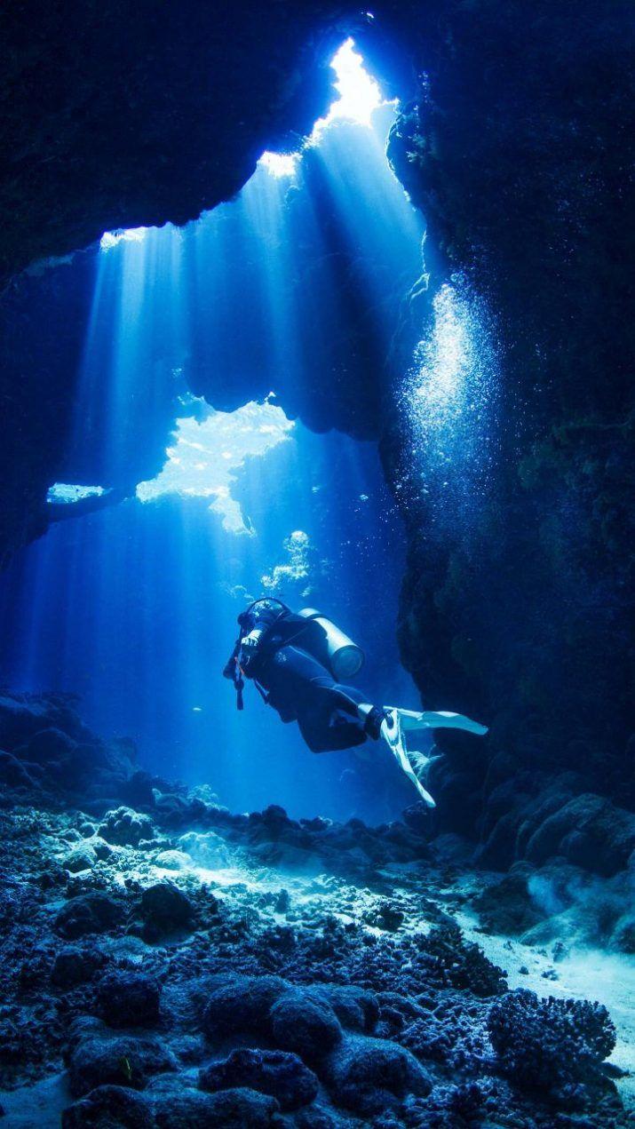 Under Water Iphone Wallpaper Underwater Iphonewallpaper Underwater Photography Rescue Diver Underwater Photos