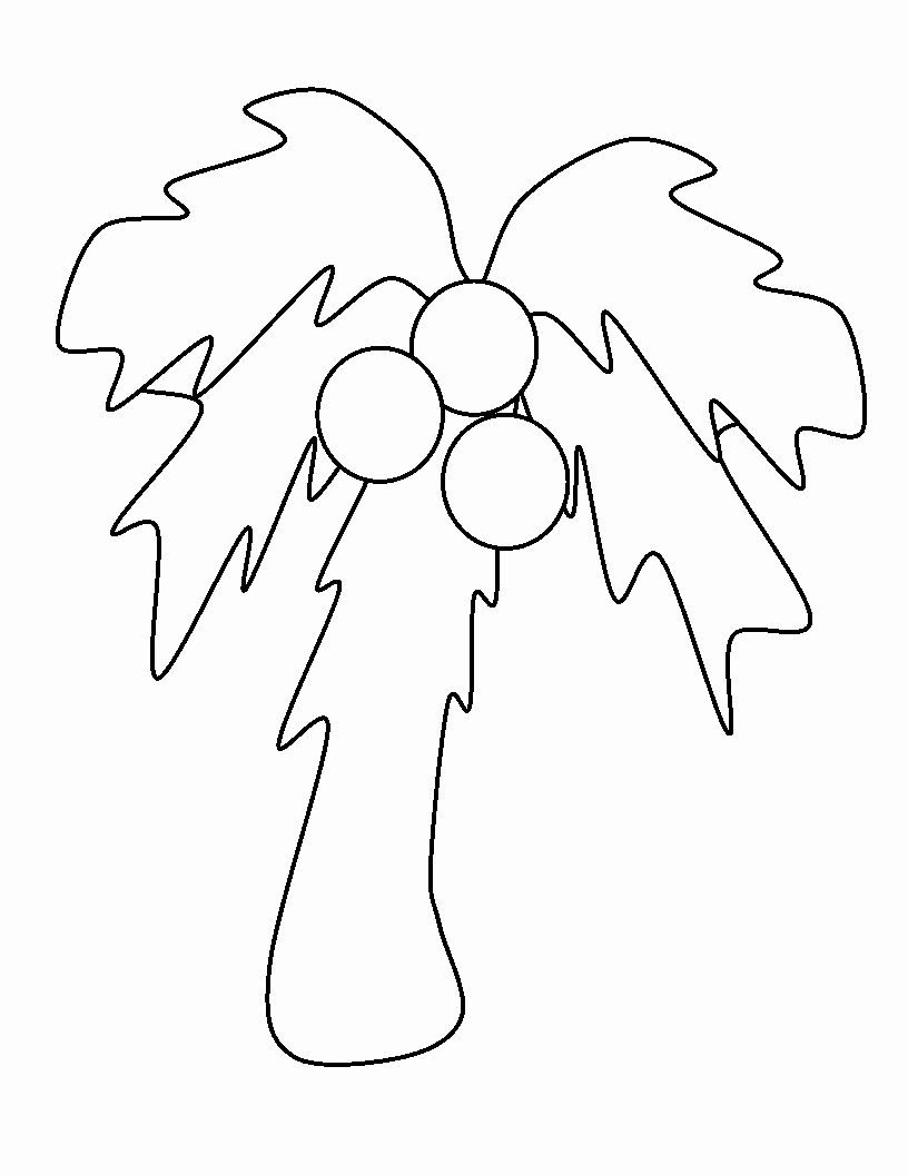 Chicka Chicka Boom Boom Coloring Page Best Of Chicka