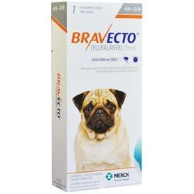 Picture Bravecto Has An Active Ingredient Called Fluralaner Due To The Recent Introduction There Is Very Little Kn Tick Treatment For Dogs Dogs Flea And Tick