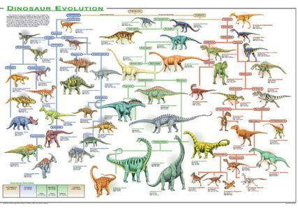 Trying To Trace The Dinosaur Family Tree Dinosaur Posters Science Chart Dinosaur