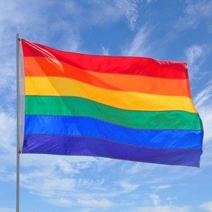 Prideflag_1-300x300