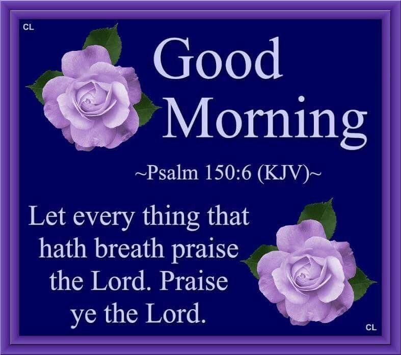 Good Morning Let Everything That Hath Breath Praise The