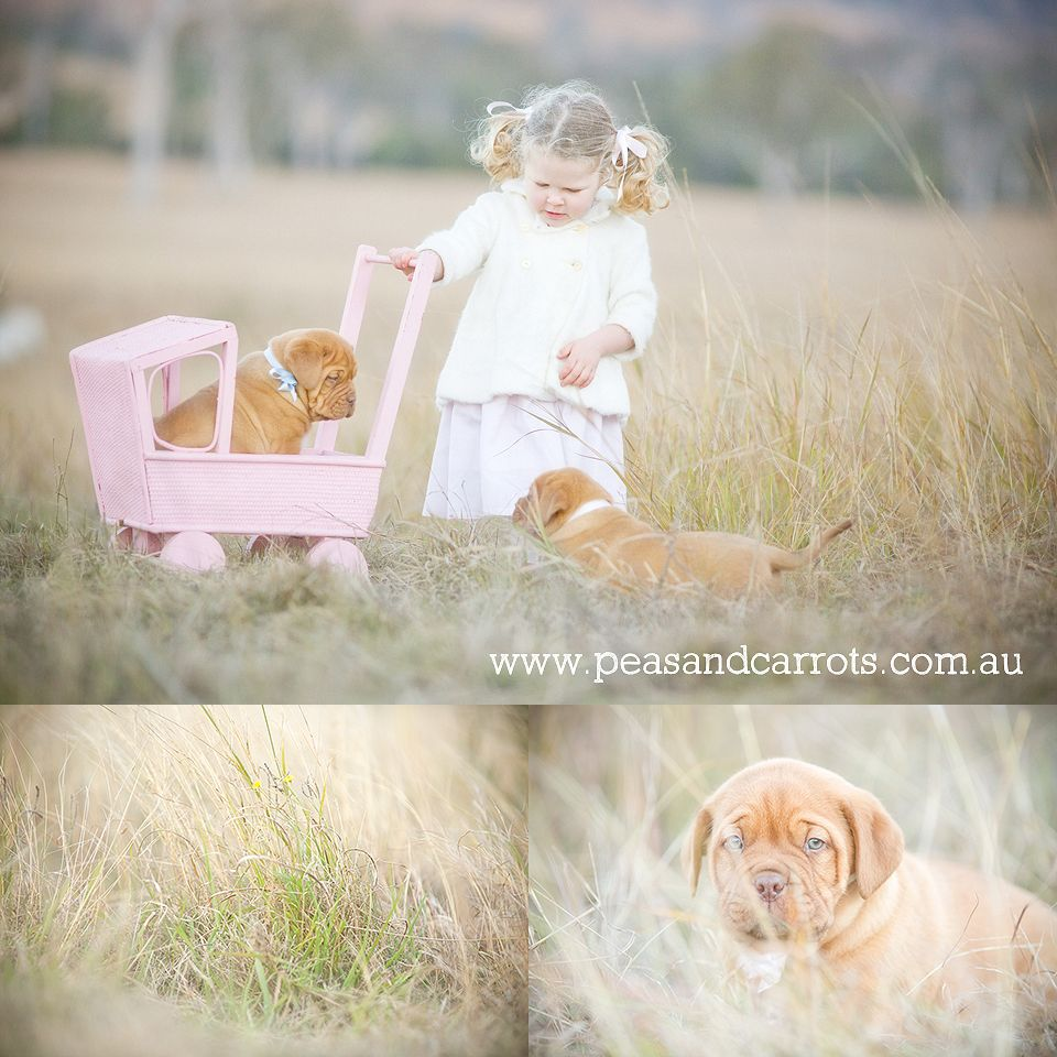 Beautiful Images To Warm Your Heart And Home Beautiful Images Family Portrait Photography Photography Home Office