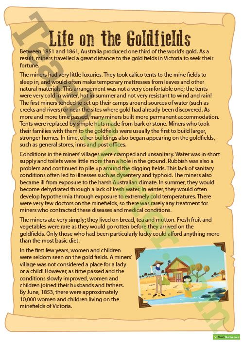 A Letter from the Goldfields - Writing Task Teaching Resource - new letter to minister format australia