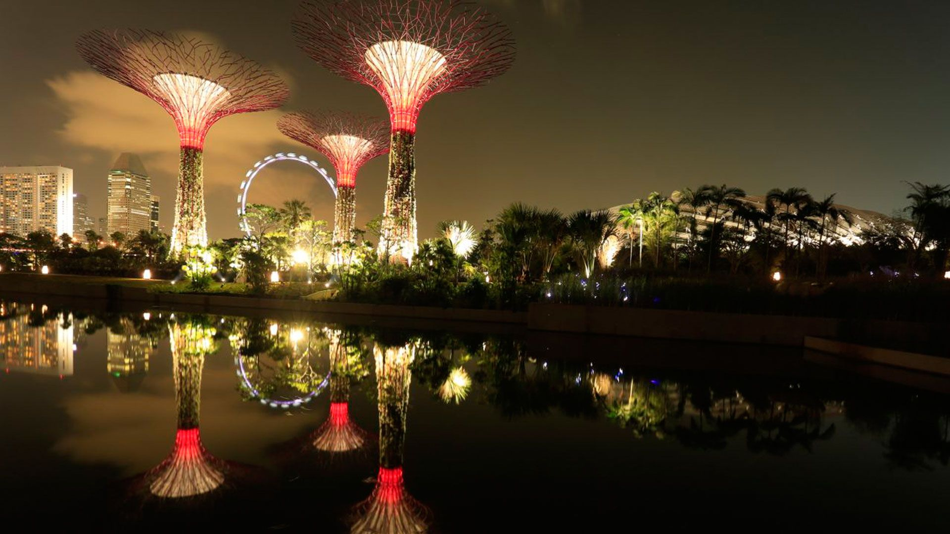 beautiful gardens by the bay in singapore