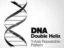 dna helix - Google Search