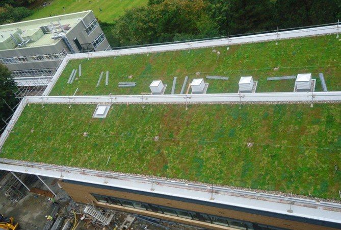 How Much Will A Green Roof Weigh A Guide To Your Options Green Roof Green Roof Technology Roofing