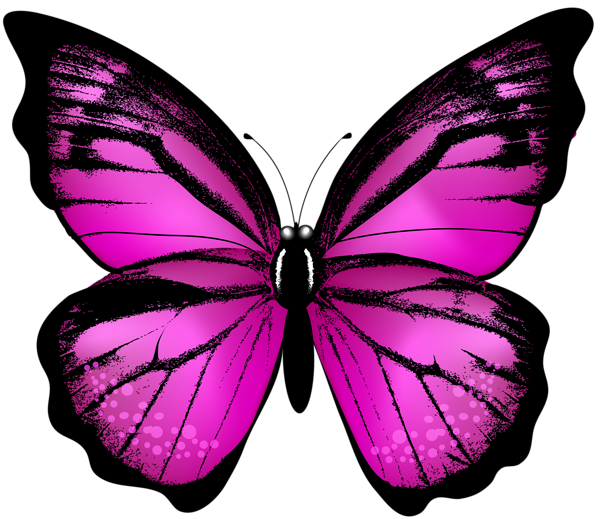 Pink Butterfly Transparent Clip Art Image Butterfly Painting Butterfly Art Painting Butterfly Art Drawing