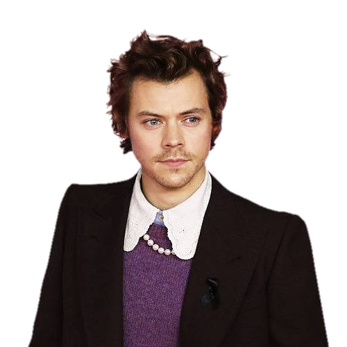 Cool Harry Styles Png Images Cat Png Harry Styles Images Harry Styles Image