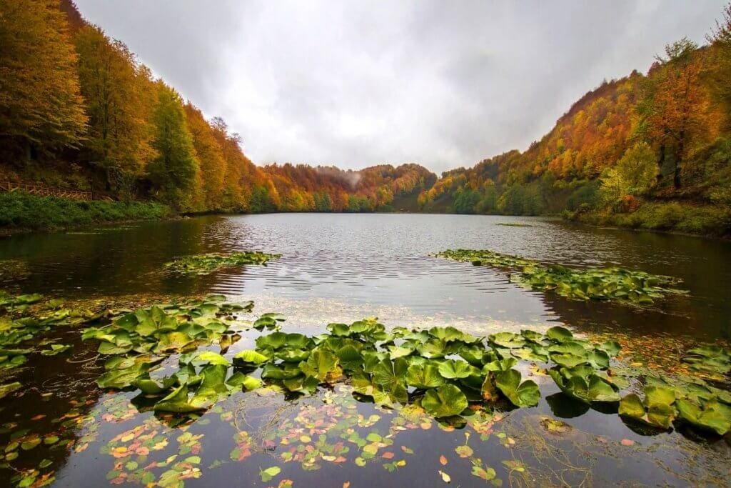 Ulugöl Tabiat Parkı Karadeniz'de Gezilecek Yerler #Ordu #Ulugöl #karadeniz