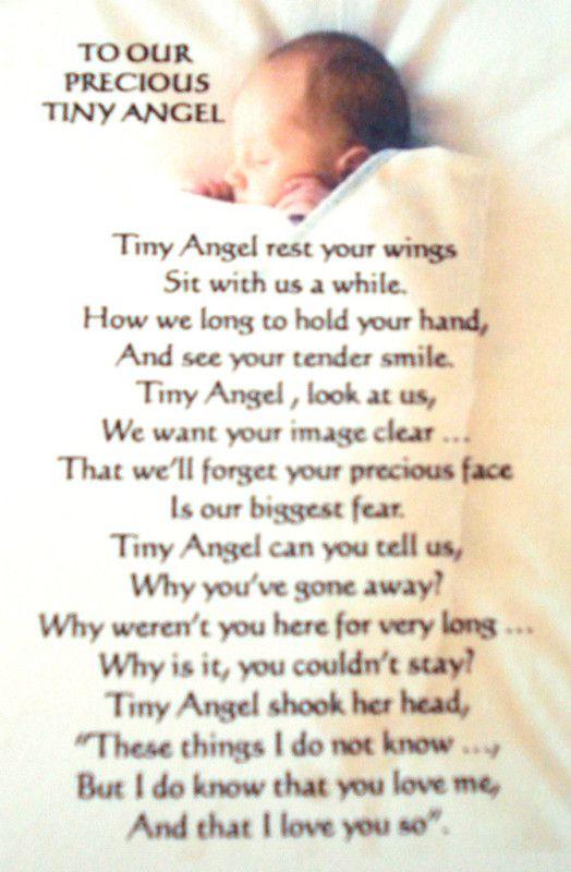Tiny Precious Angel Saylor And Aurora